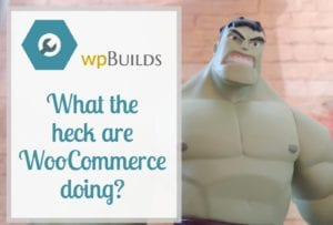 What the heck are WooCommerce going?