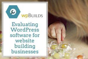 Evaluating WordPress software for website building businesses